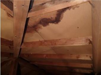 小屋裏の雨漏り