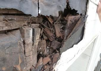 雨水で腐食したサイディングの内側